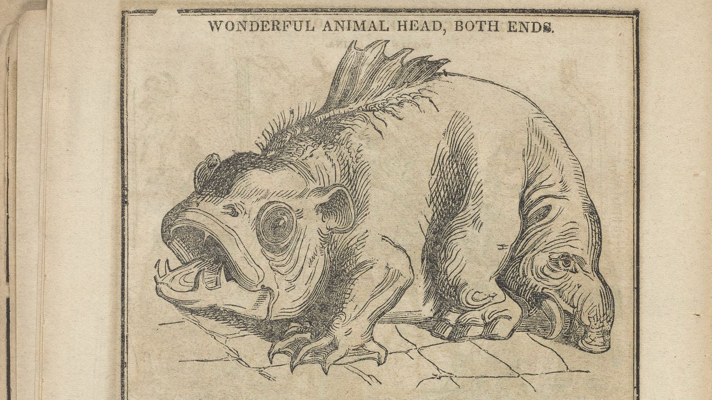 "drawing of an animal, captioned ""wonderful animal head, both ends"""