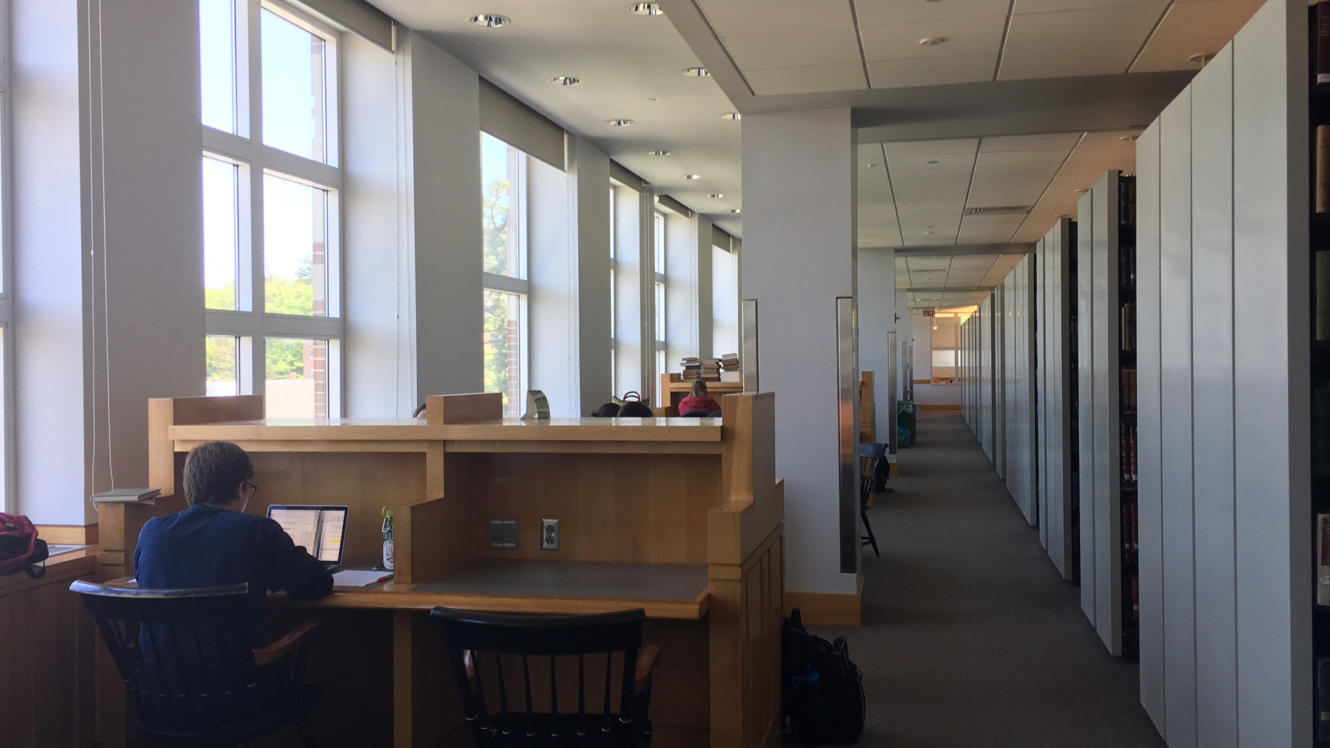 Students study in the Dartmouth Library