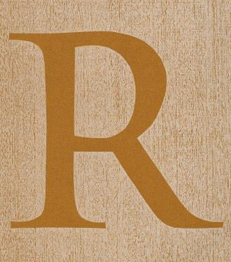 Letter R in Dartmouth typeface